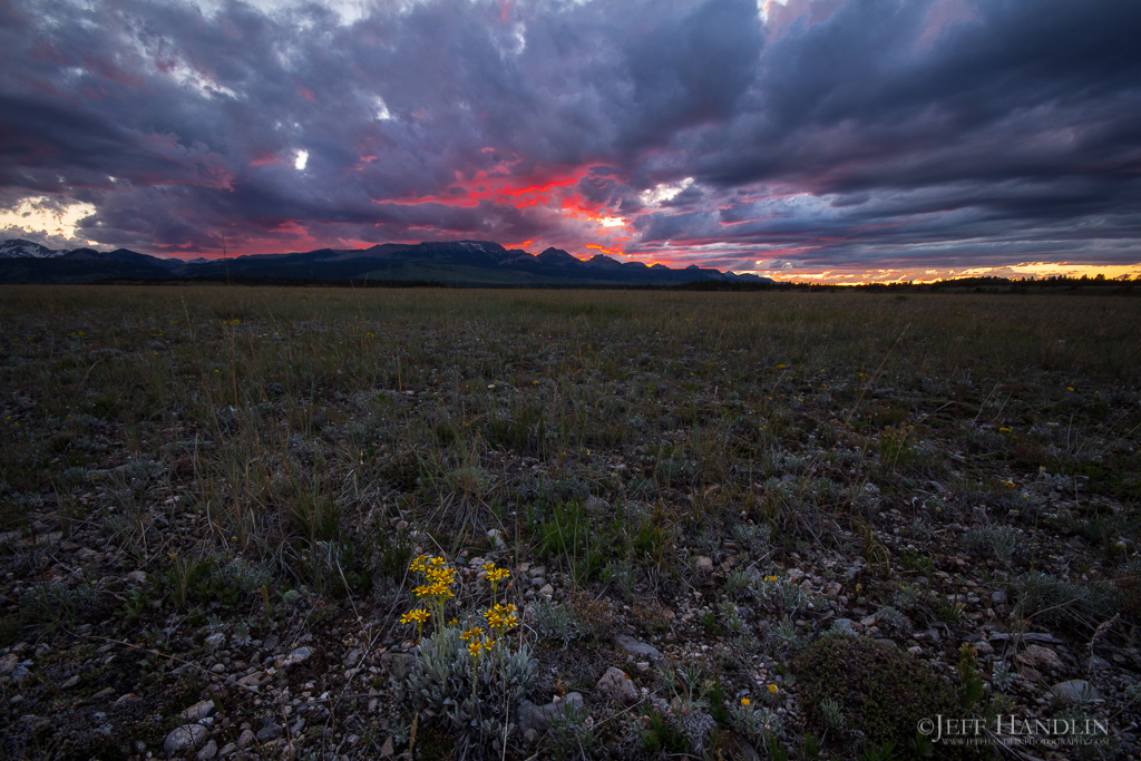 Rocky Mtn Front 20150605-07-038